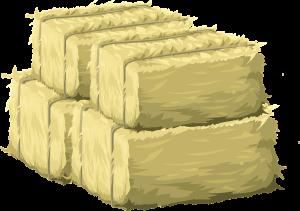Съхранение на стевия