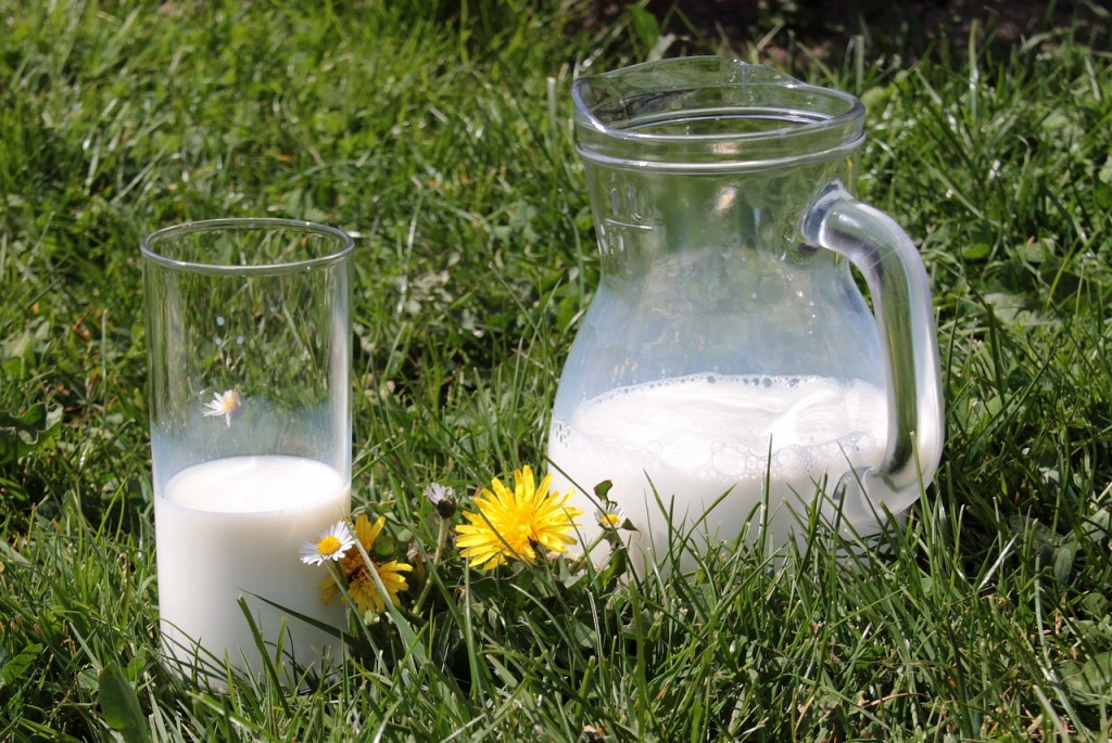 напитка - Стевия с мляко и ягоди